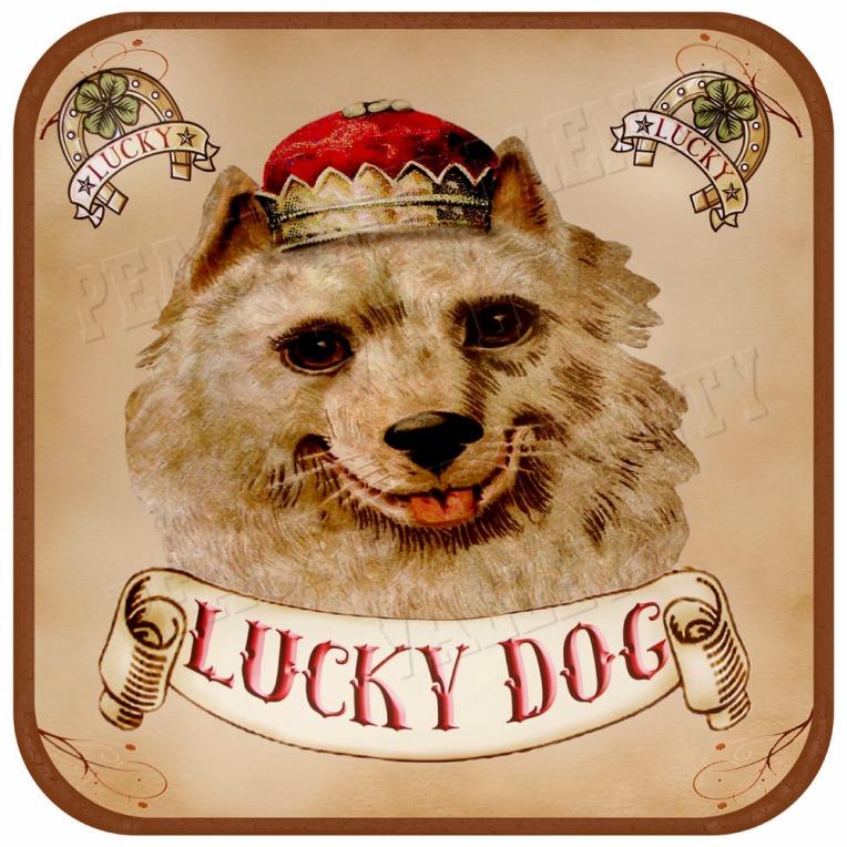 Dog Pet art brown trim square
